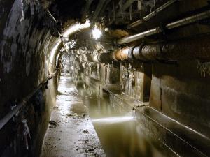 Проводится проверка по факту попадания канализационных стоков в реку Темерник в г. Ростове-на-Дону