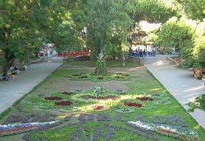 Более полутора миллионов цветов будет высажено в этом году в донской столице