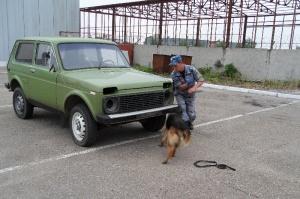 Попытка контрабанды пресечена ростовскими таможниками