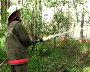 Полицейские продолжают контролировать зону пожара