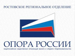 Донская «ОПОРА России» готовится продвигать регион и подводит итоги