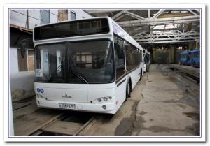 Штрафстоянка для ростовского мэра дороже пассажироперевозчика?
